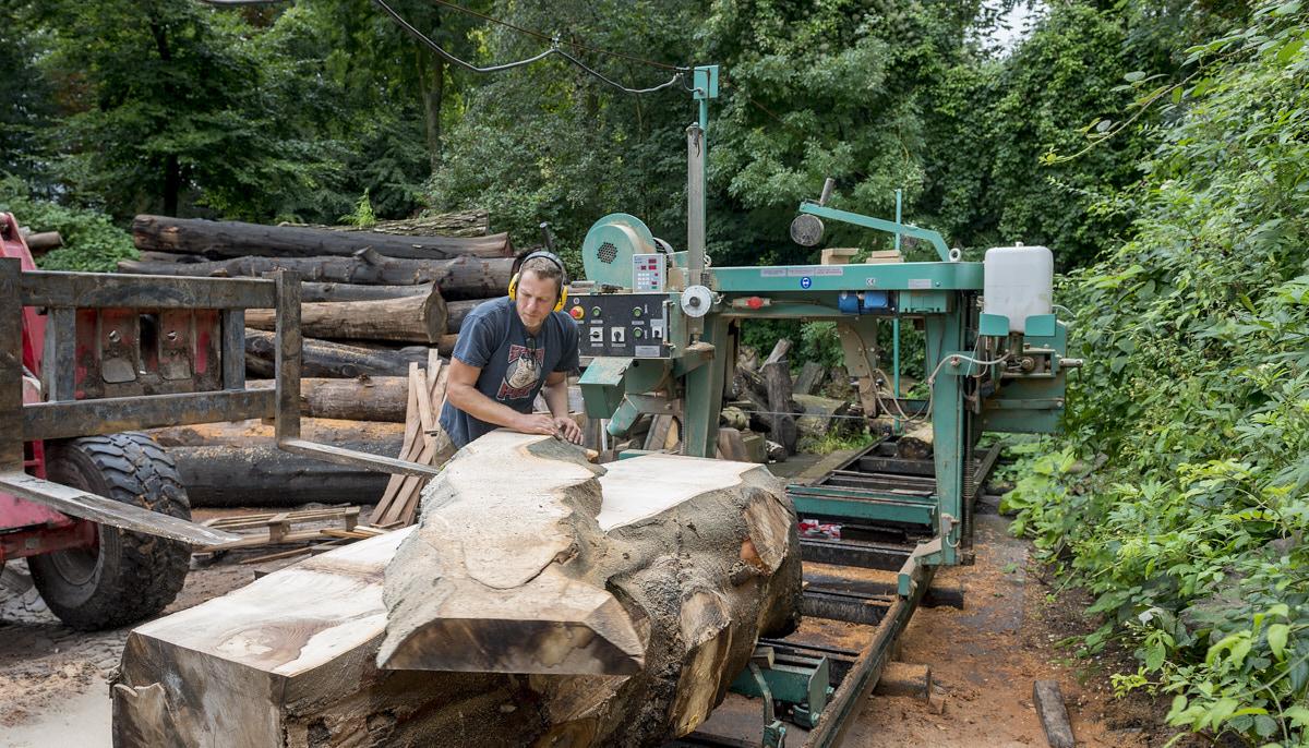 Stadshout, hout uit de stad voor meubels, zagerij, boomstam, crisow van schulz, foto frank penders